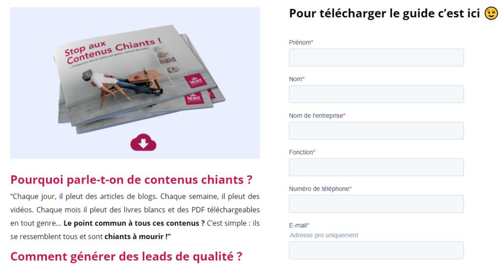 Capture d'écran d'une landing page pour montrer un exemple de génération de leads avec un contenu à télécharger