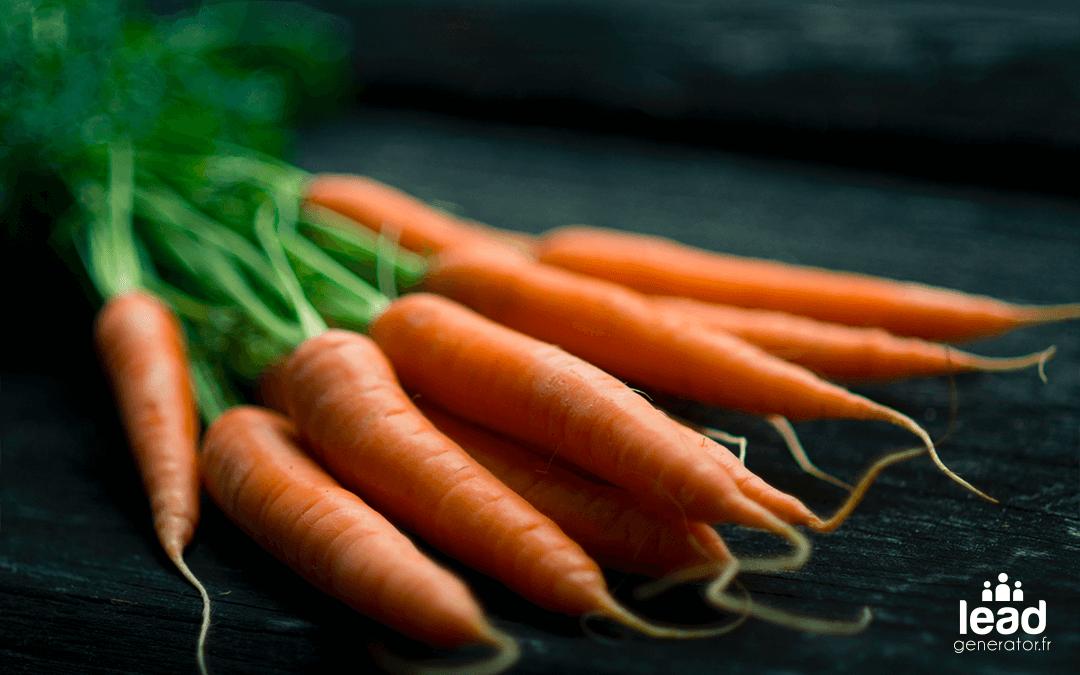Photo de carottes pour illustrer la génération de leads pour les commerciaux